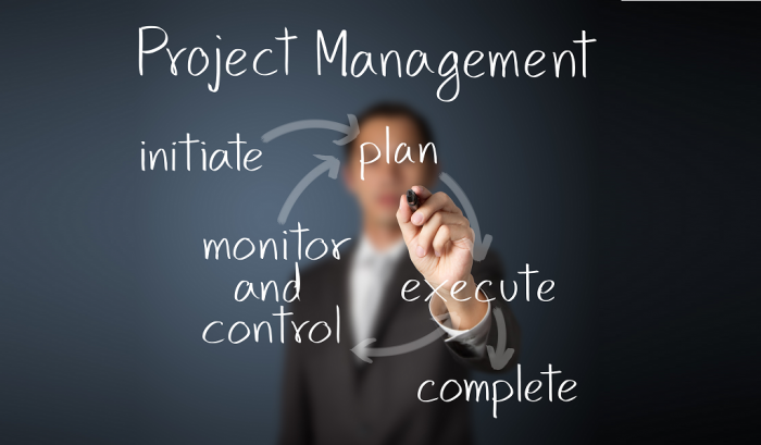 Project Program and PMO Consulting